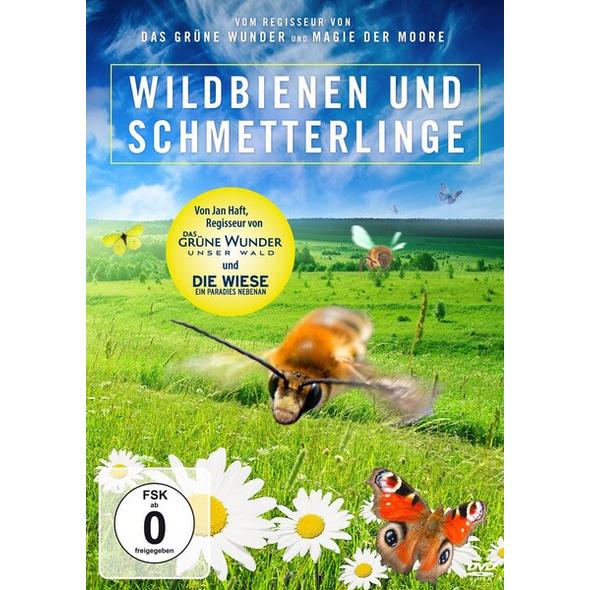 Wildbienen und Schmetterlinge