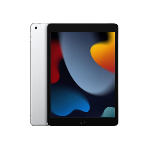 Apple iPad (2021), mit WiFi & Cellular, 256 GB, silber