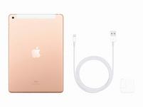 Apple iPad (2019), mit WiFi & Cellular, 32 GB, gold